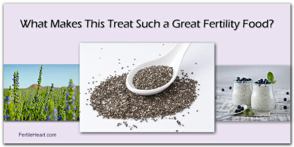 Chia Seeds: Part of Fertility Friendly Diet