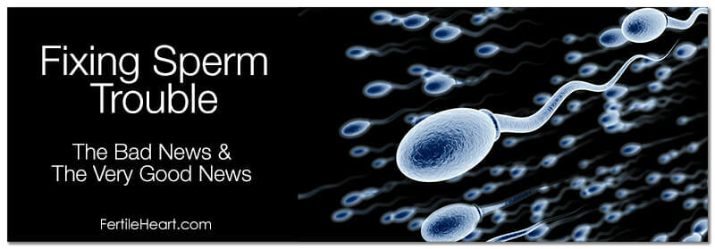 The Very Good News with Sperm Trouble and Fertile Heart