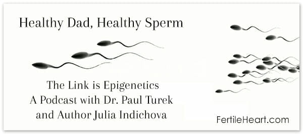 Healthy Dad Healthy Sperm A talk on Epigenetics with Dr. Paul Turek and Author Julia Indichova