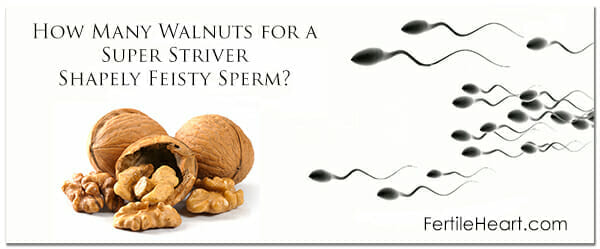 Healthy Dad Healthy Sperm A Free Fertile Heart Chat