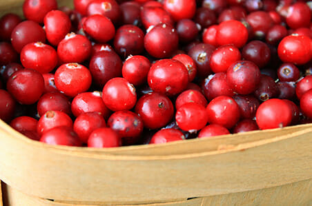 Fertility Friendly Cranberries in Basket