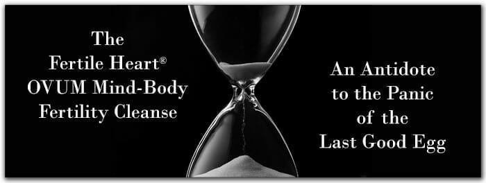 The Fertile Heart Mind-Body Fertility Cleanse Hourglass