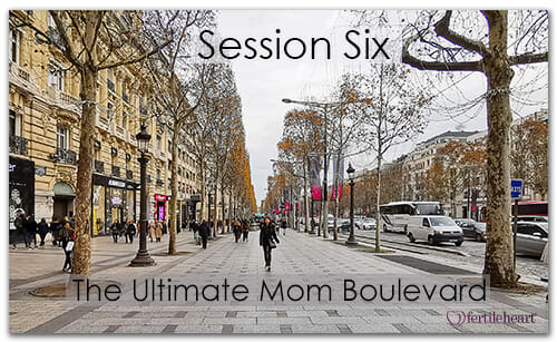 Paris Boulevard Meeting Your Child Halfway Video Series Session 6 Ultimate mom