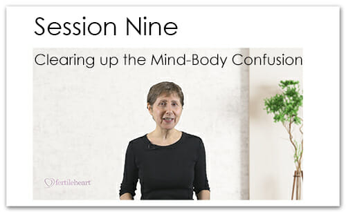 Julia Indichova Meeting Your Child Halfway Video Series Session 9 Mind-Body Confusion