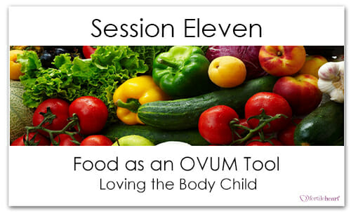 Assorted Fruit and Vegetables Meeting Your Child Halfway Video Series Session 11 Food