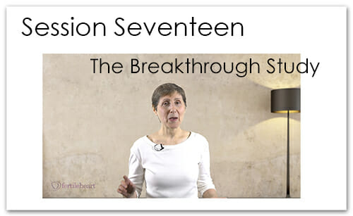 Julia Indichova Meeting Your Child Halfway Video Series Session 17 Breakthrough Study