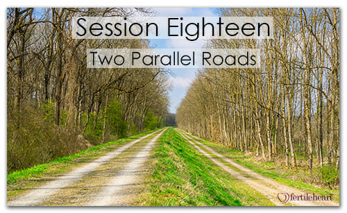 2 Country Roads Meeting Your Child Halfway Video Series Session 18 Two Parallel Roads