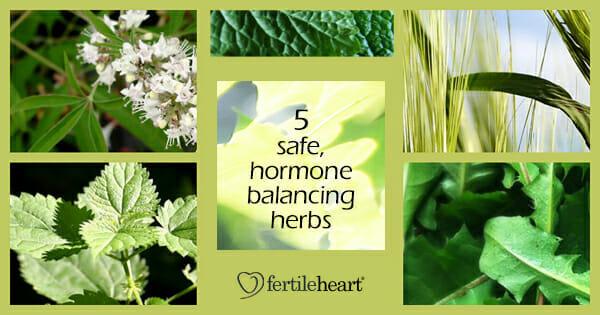Fertility Herbs - 5 Safe Hormone Balancing Herbs