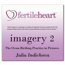 Imagery 2 CD with Julia Indichova