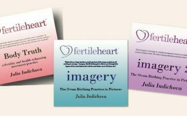 Fertile Heart Toolkit CDs for Overcoming Infertility