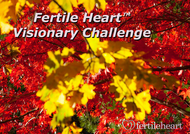 Fertile Heart Overcoming Infertility