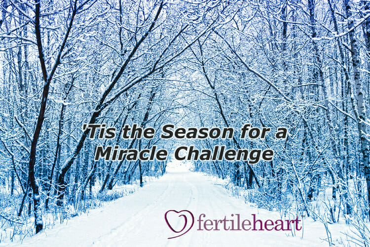 Winter Snow Fertile Heart Miracle Challenge
