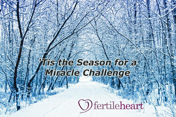 WinterSnowFertileHeartMiracleChallenge