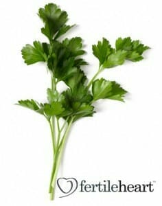 cooking-with- fertility herbs -parsley