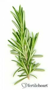 cooking-with- fertility herbs-rosemary