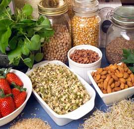 nuts legumes berries